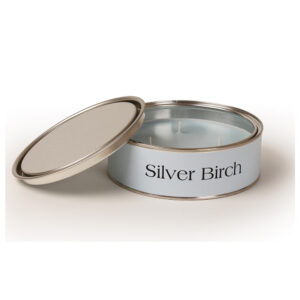 Pintail Candles Large 3 Wick Scented Candle Tin - Silver Birch-0